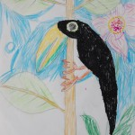 A Toucan by Katie (click for larger image)